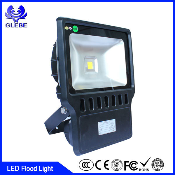 60W Outdoor LED Flood Light 100lm/W Outdoor Lighting IP66 AC220V