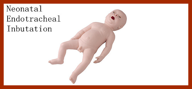 Medical Baby Neonatal Endotracheal Intubation Training Manikin