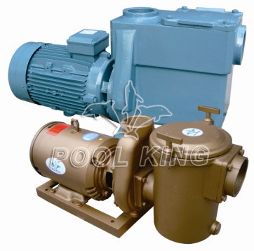 High Performance Residential Swimming Pool Pump