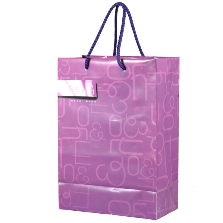 PVC Printed String Handle Bags for Shopping (FLS-8041)