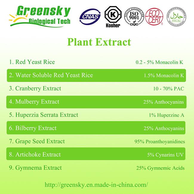 Gymnema Extract with 25% Gymnemic Acids