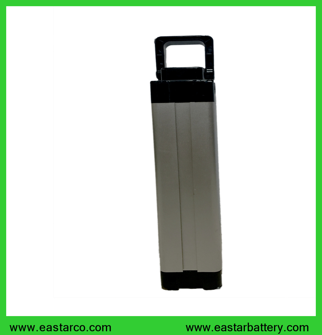 Wholesale Price 18650 10ah 36V Rechargeable Li Ion Battery for Electric Bike
