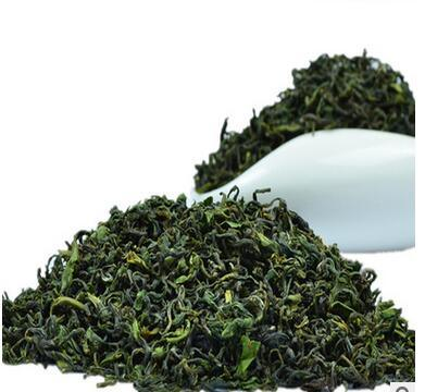 Green Tea in New Season