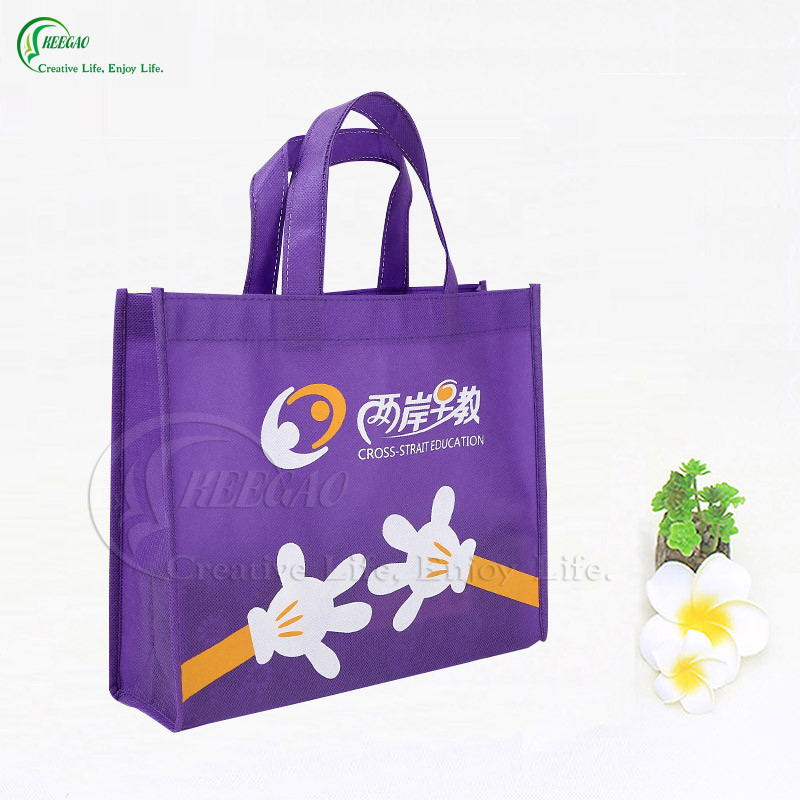 Promotional Logo Printed Shopping Non Woven Bag (KG-PN004)