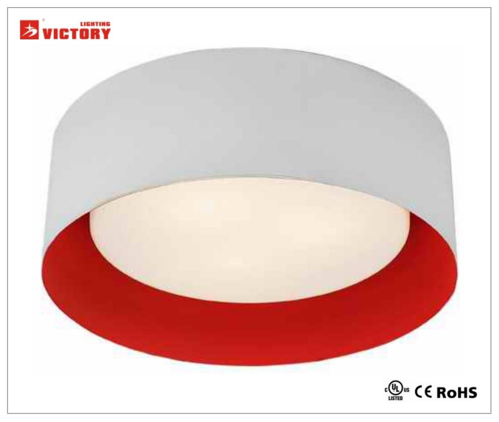 Modern LED Commercial Lighting Ceiling Pendant Lights Lamp for Living Room