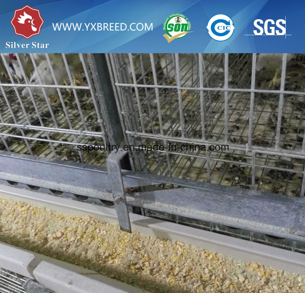 Automatic Birds Farm Equipment Used for Half Enclosed Chicken House (A-4L120)