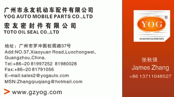 Yog Motorcycle Parts Motorcycle Brake Shoes for Cg125 Cg150