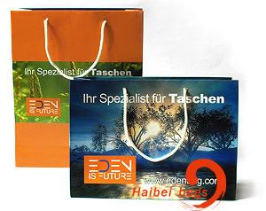 Promotional Paper Gift Bag, Brown Kraft Paper Bag, Shoe & Garment Carrier Bag, Boutique Suit Shopper Bag, Fashion Cosmetic Packing & Packaging Bag
