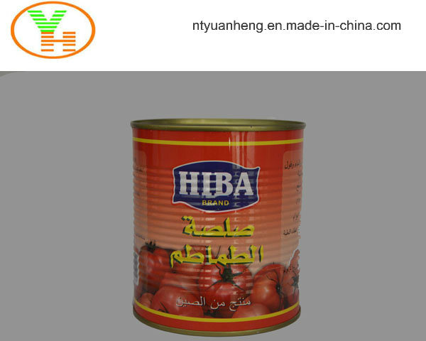 Aseptic Tomato Paste Tomato Puree Canned Vegetable