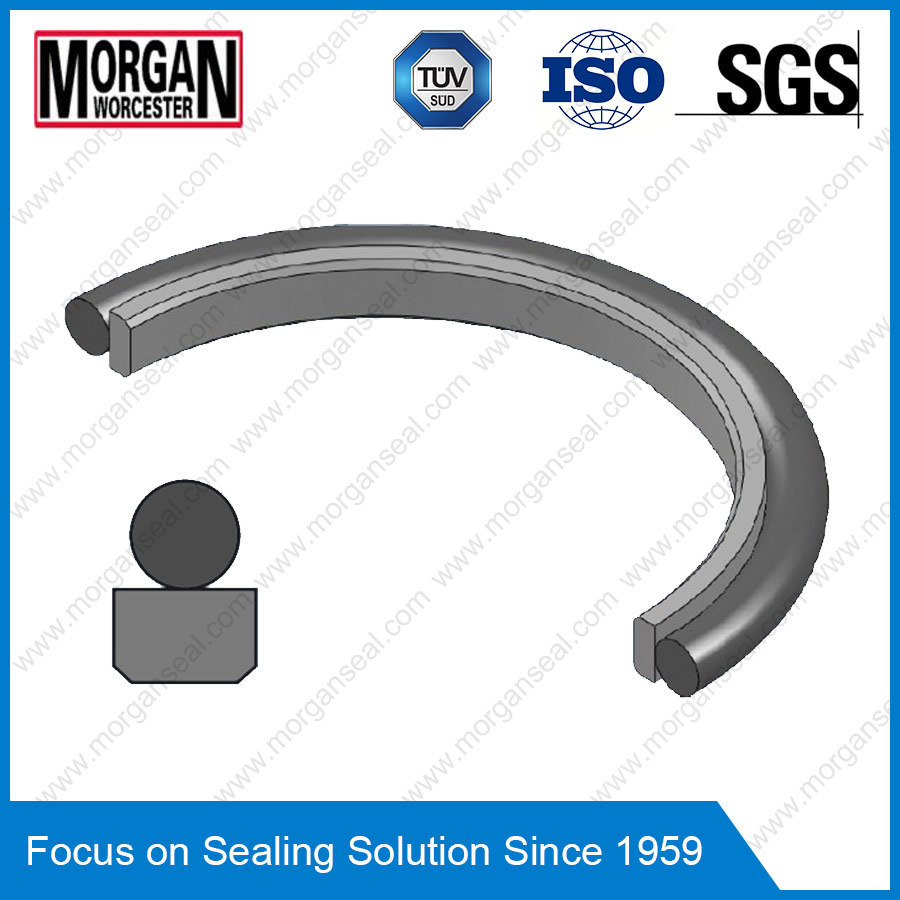 Rg4/on Profile Hydraulic Cylinder Piston Rod Seal Ring