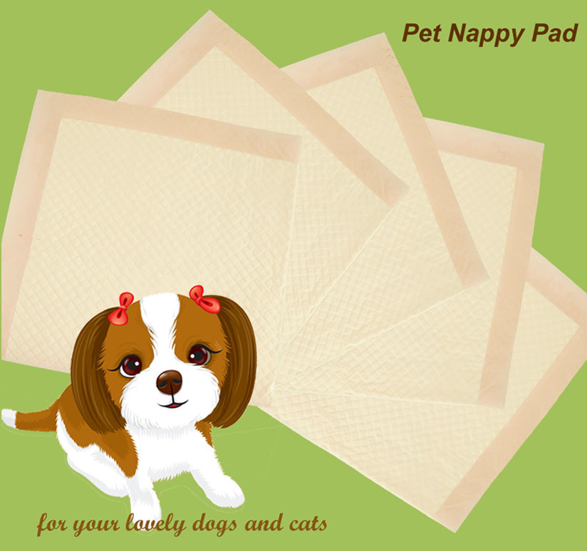 Pet Puppy Pad