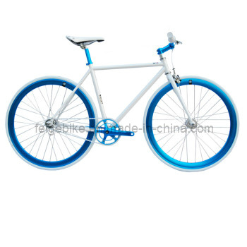 Single Speed Fixed Gear Bicycle (FP-FGB007)