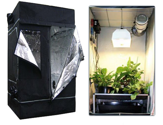 how to set up grow tent ventilation
