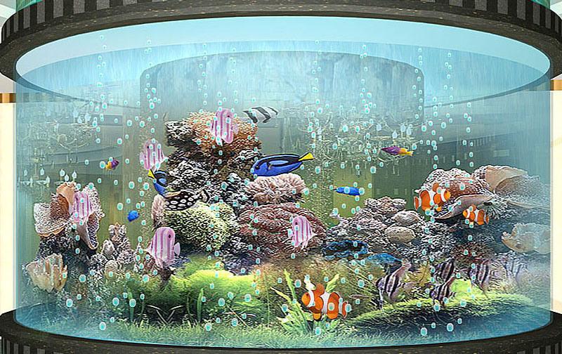 China cylinder fish tank china fish tank for Cylindrical fish tank