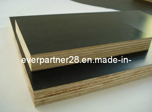 Waterproof Film Faced Marine Shuttering Plywood for Concrete Construction