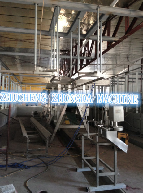 Line Type Good Qaulity Full Set of Chicken Slaughtering Equipment