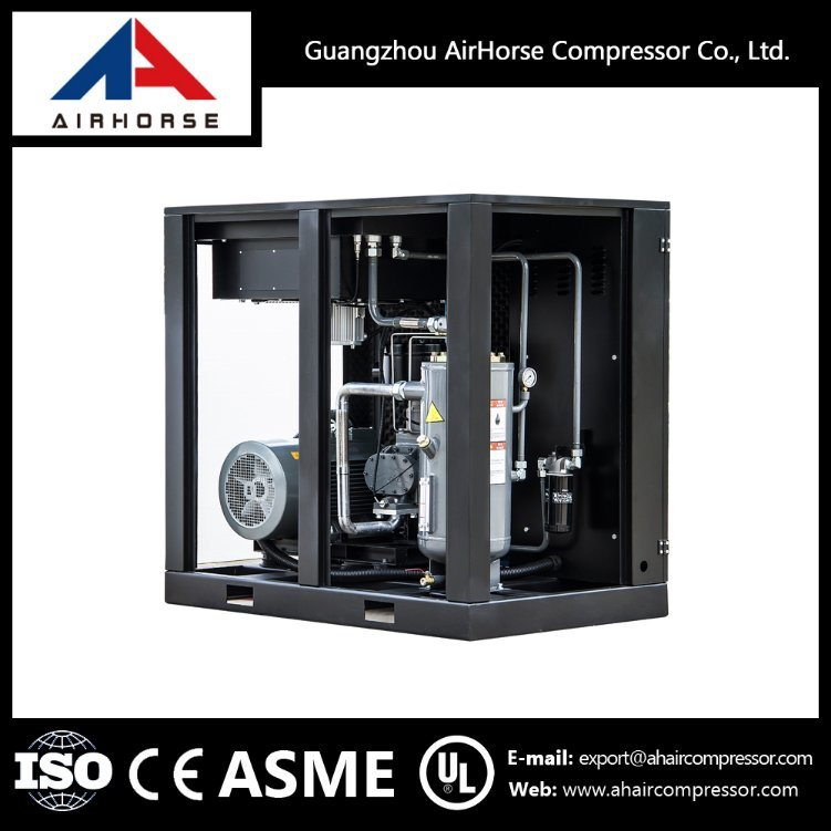 Professional Manufacturer of Screw Air Compressor (4KW-75KW)