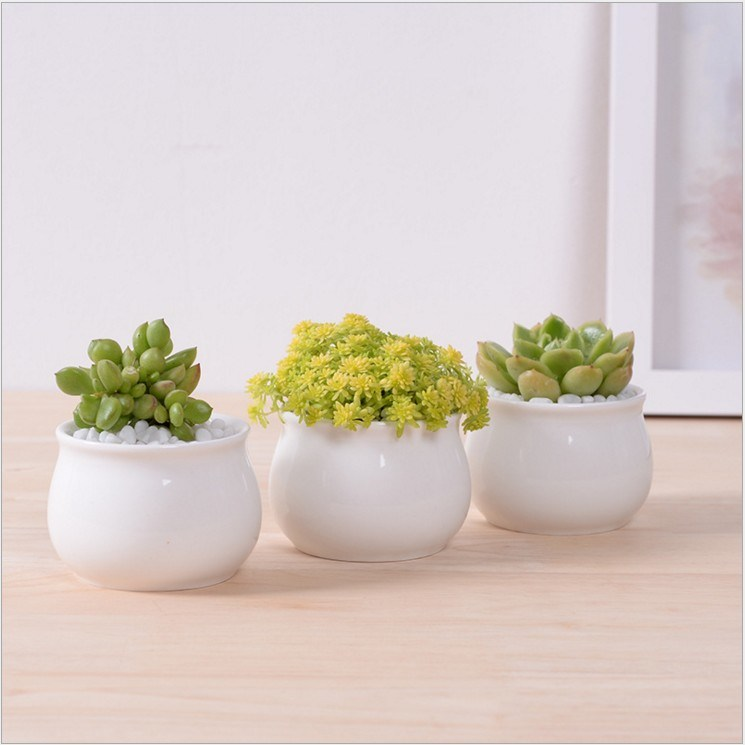 Creative Desktop Decoration Mini White Round Ceramic Flower Pot