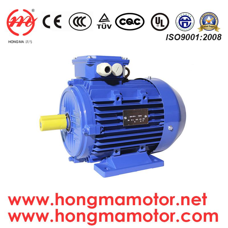 Ie3 Premium Efficiency Electric Motor