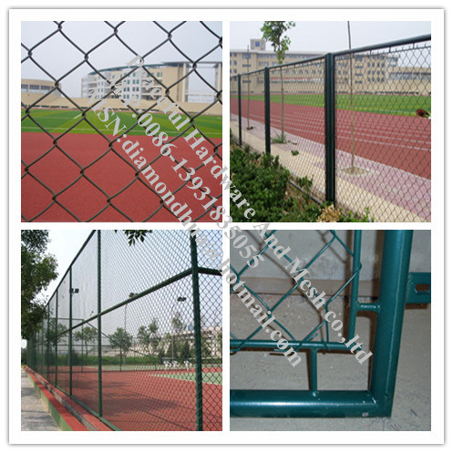 Green Color PVC Coated Chain Link Mesh (R-GHW)
