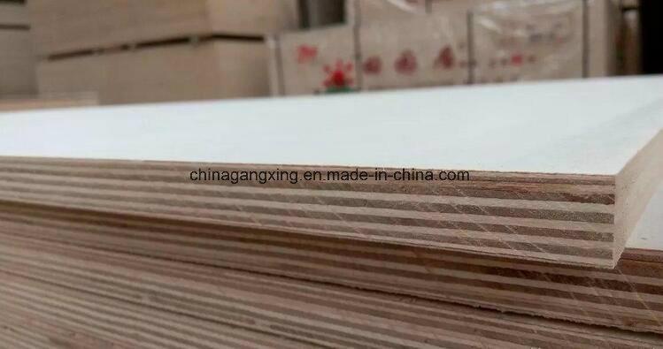 Poplar Birch Fancy Film Faced Decorative Plywood for Furniture