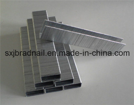 Good Price 10j Series Furniture Staples From China
