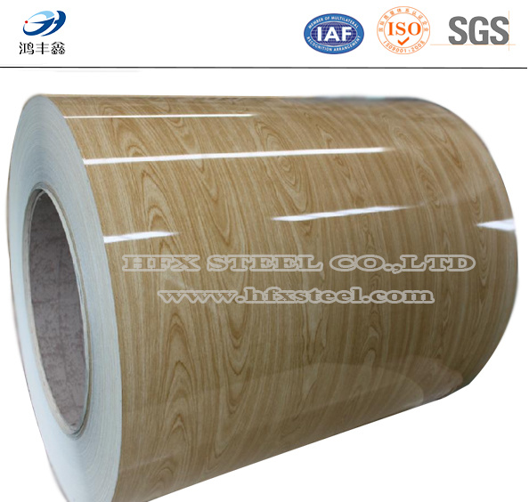 Wooden Prepainted Galvanized Steel Coil From Shandong