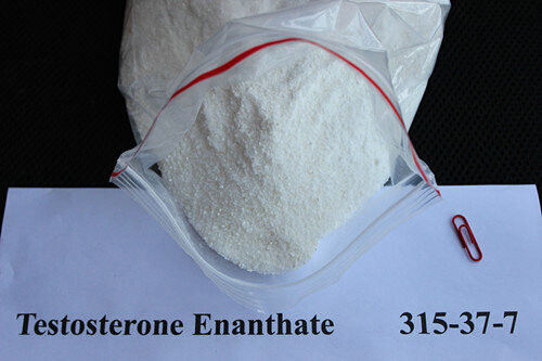 High Purity Steroid Hormone Testosterone Enanthate