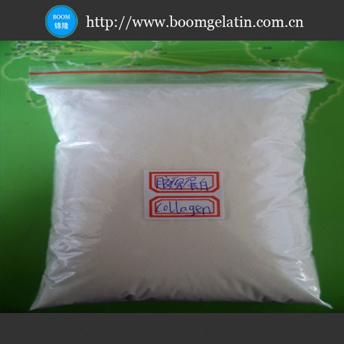 Food / Cosmetic Grade Fish Collagen - China Collagen,Fish Collagen