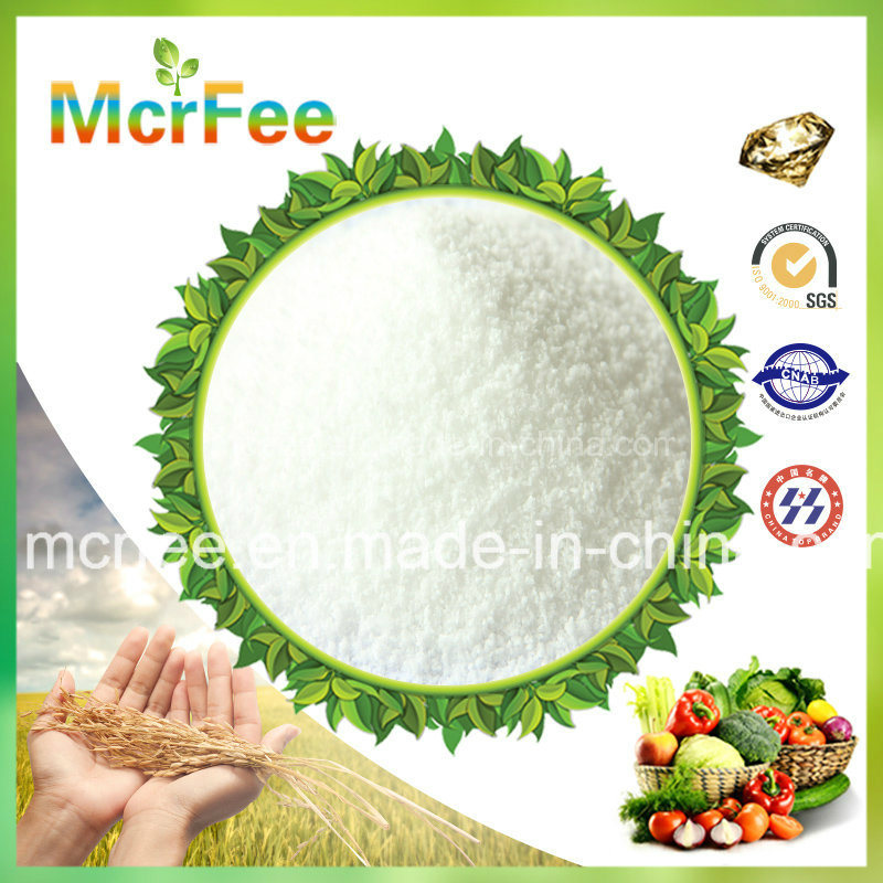High Quality NPK Fertilizer 20-20-20 Te