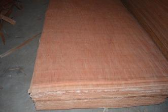 Good Quality Bintanger Veneer with Good Price