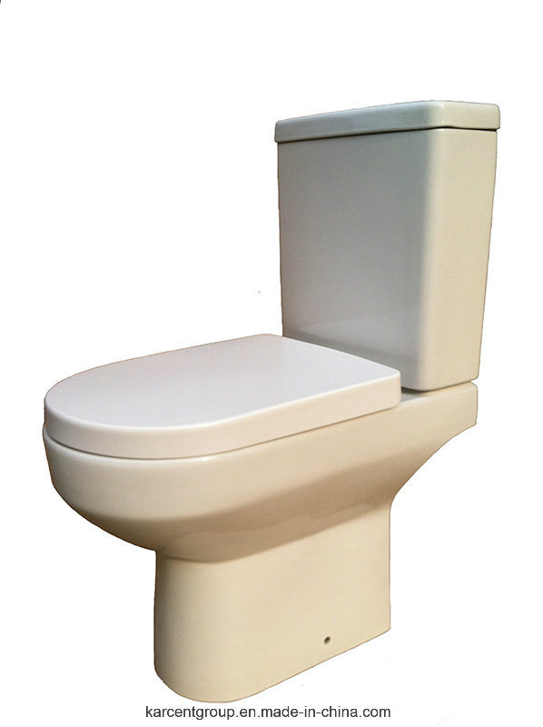 Two Piece Ceramic Toilet Washdown Toilet Water Closet Wc 10136