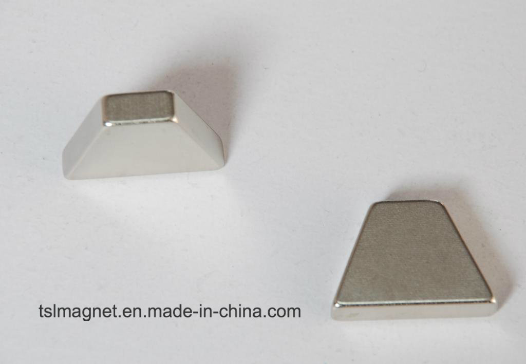 Irregular Permanent Sintered Neodymium Rare Earth Magnet