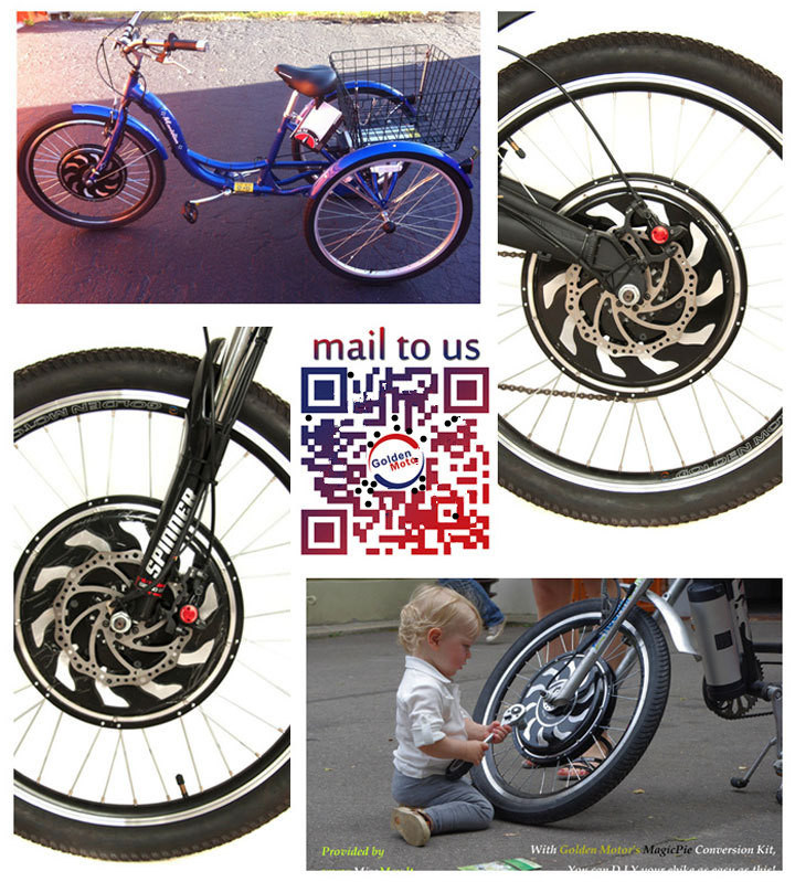 Sine Wave Controller in 3 Wheel Motorized Bike, Electric Cargo Trike, Three Electric Cargo Tricycle with Our Hub Motor