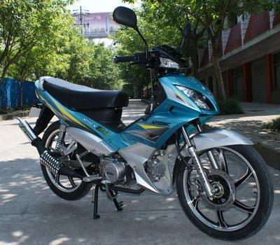 Motorycle Cub (KS110-13)