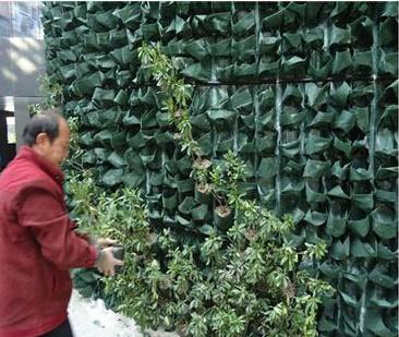 Pocket Planter Bag Manufacture Vertical Planting Bag