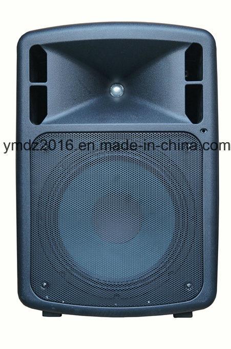 New Professional DVD Mobile Portable Active Power Speaker Amplifier Mas10-10wa
