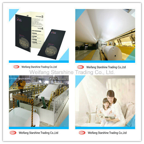 Double Side Coated Art Paper for Printing Magazines