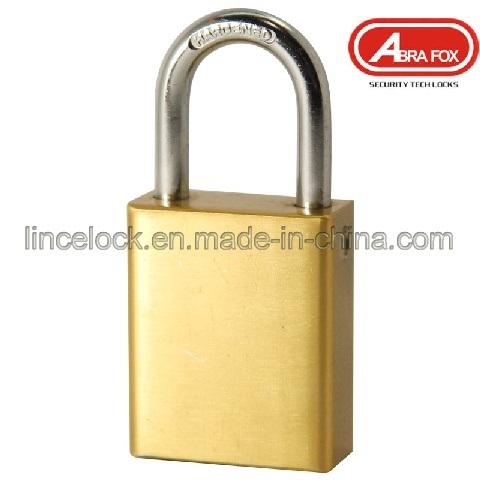Padlock/Aluminum Alloy Padlock/Brass Padlock (611)
