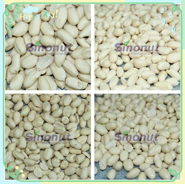 New Crop Blanched Peanut Kernels with 25/29, 29/33