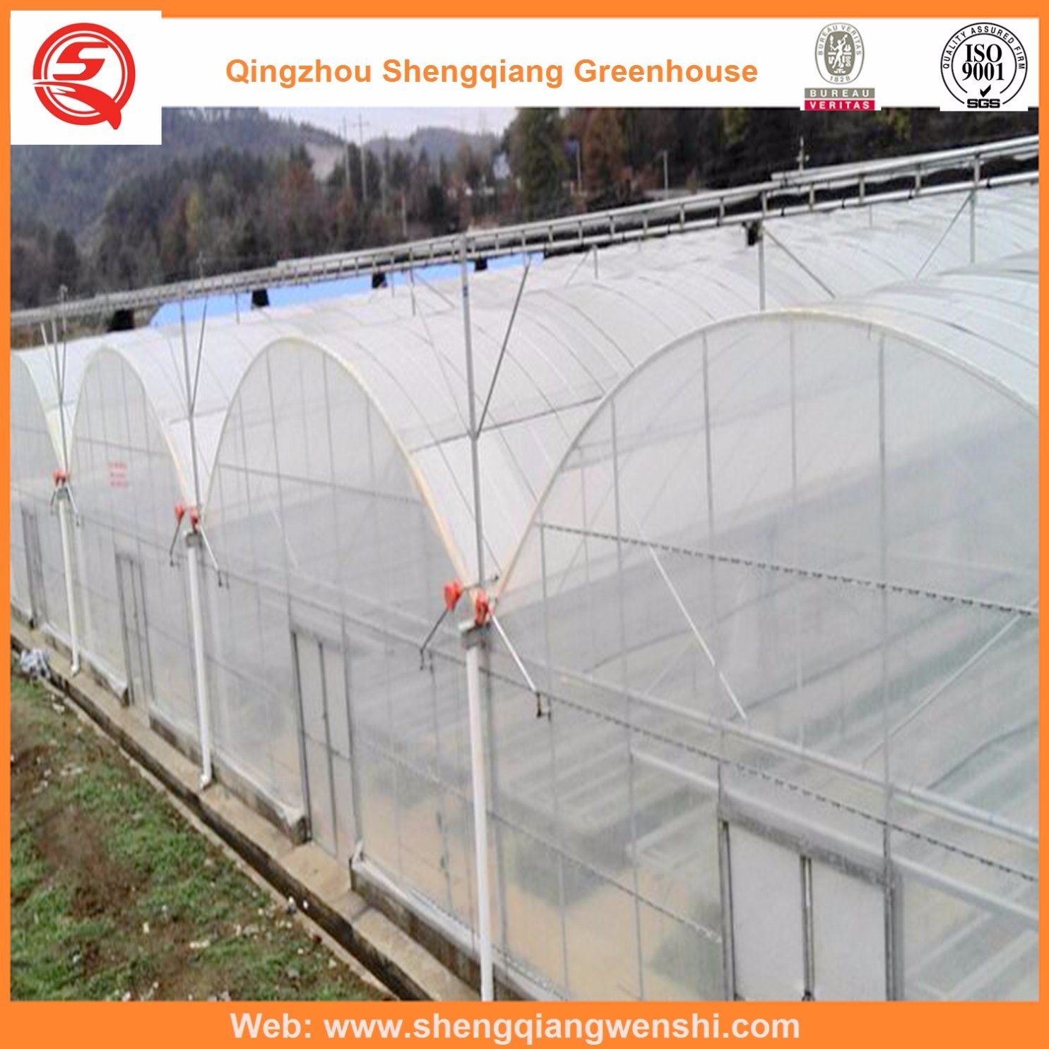 Agriculture Multi Span Plastic Greenhouse for Vegetables