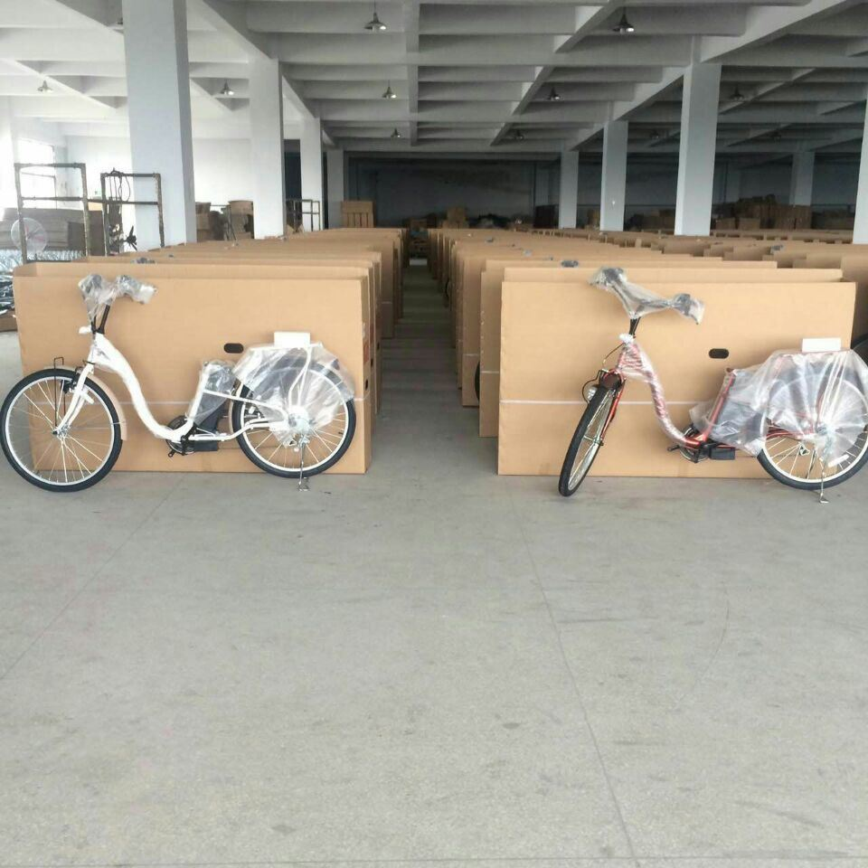 Hot Selling Japan Electric Bicycle/Bike Made in China