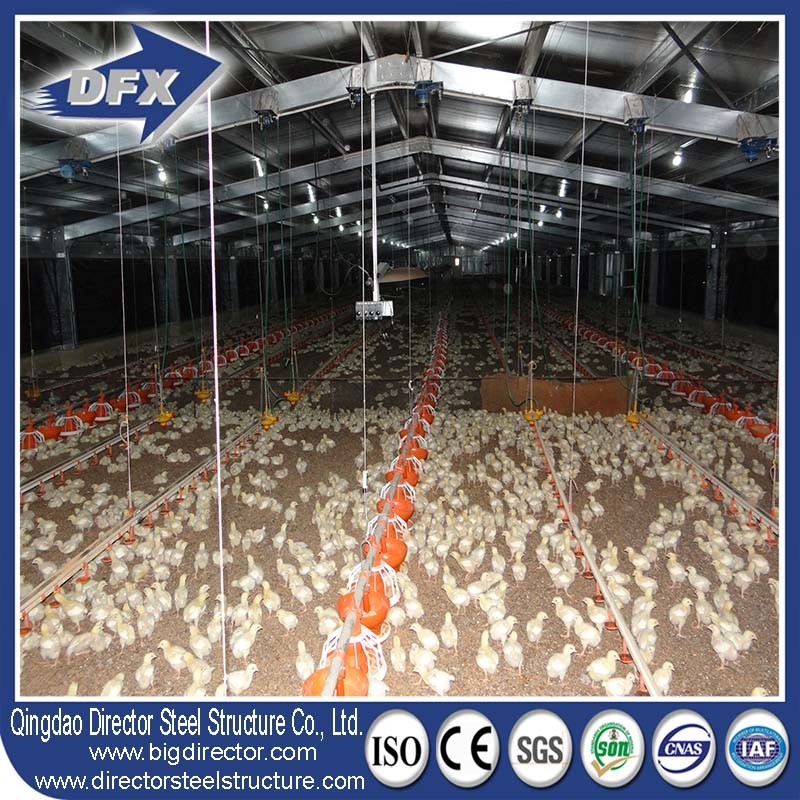 Low Cost Galvanized Steel Frame Chicken House