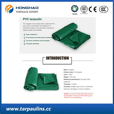 PVC Owning/Tent Waterproof Tarp/Tarpaulin for Cover