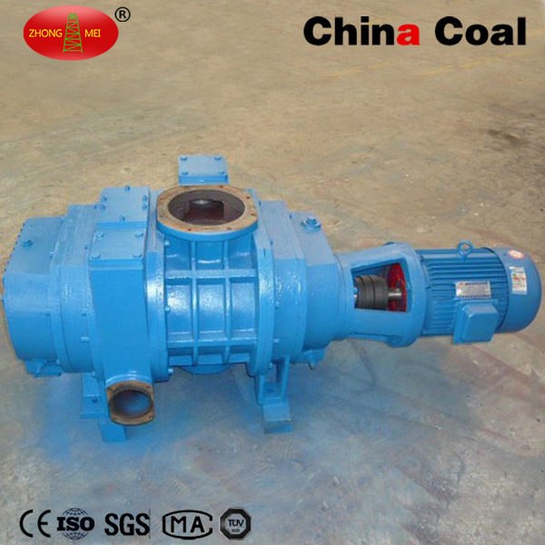 High Quality Zjp Electric Coating Roots Water Vacuum Pump