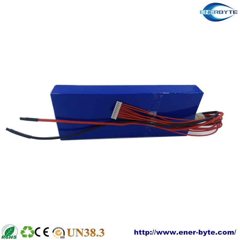 Lithium Battery Pack 12V40ah for Energy Storage/E-Scooter