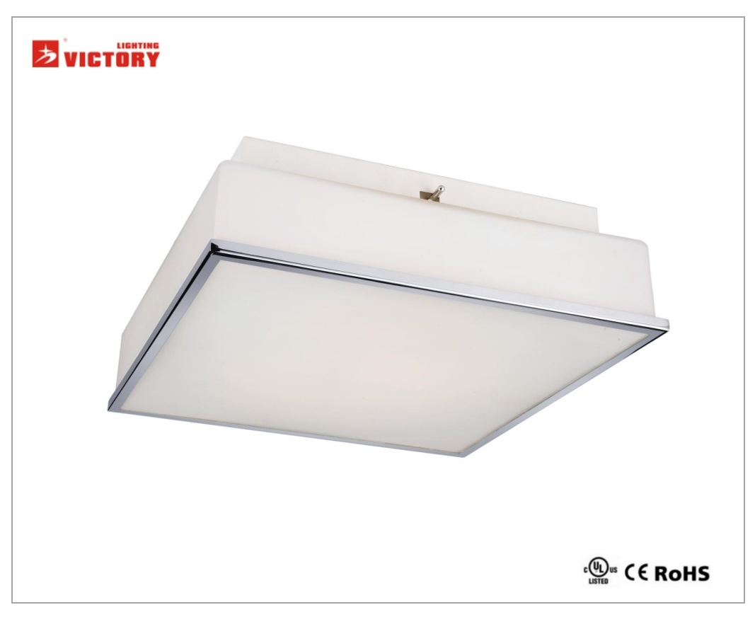 LED Modern Simple Decorative Square Glass Ceiling Lamp with Ce UL Approval