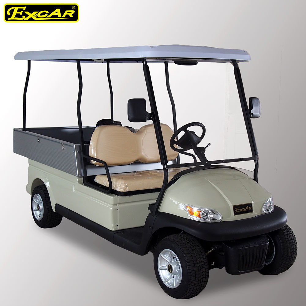 2 Seater A1h2 Utility Cart Electric Golf Cart with Cargo