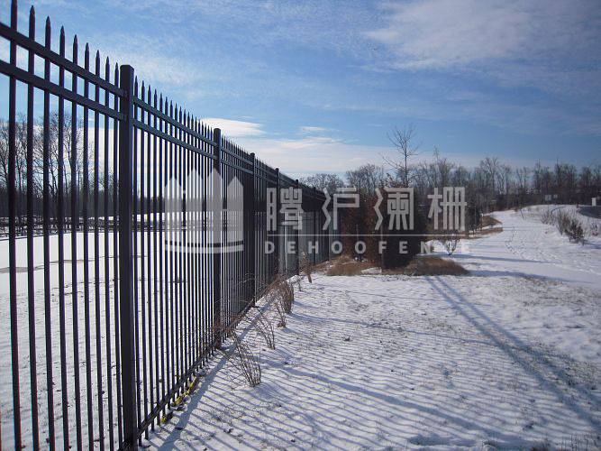 Hot Sale Powder Coated Steel Fencing with High Decorative, Ornaments, Galvanized Steel