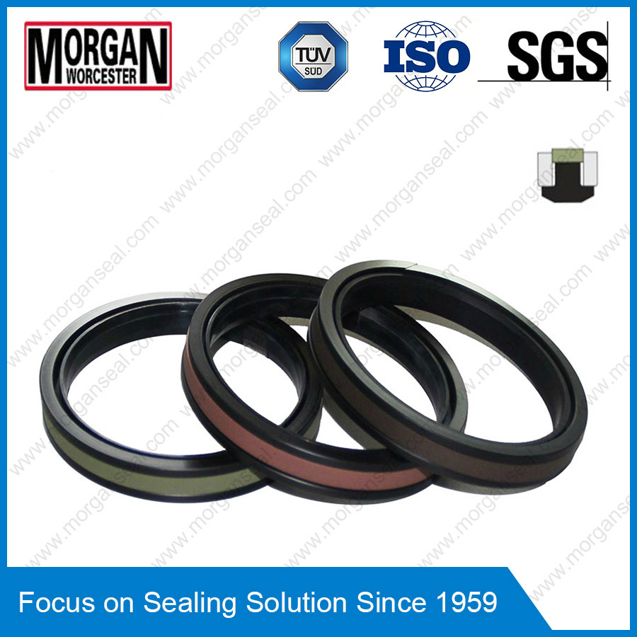 High Pressure Spgw/Phd Type Hydraulic Cylinder Piston Seal Ring
